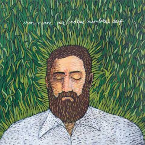 Iron wine our endless numbered days folk indie us